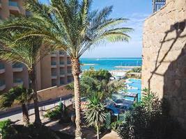 Hermosa vista desde la ventana a palmeras en Hurghada, Egipto foto