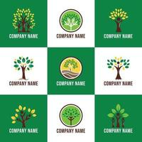 Logo Focused on Trees Growing in the Nature vector