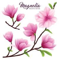 Realistic Magnolia Flower Icon Set Vector Illustration