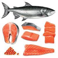 Ilustración de vector de conjunto de salmón realista