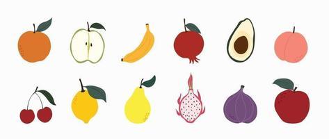 Set of colorful fruit icons vector. Hand drawn of banana, apple, pear, orange, peach, plum, watermelon, pineapple, papaya, grapes, cherry, lemon. Vector illustration, isolated on white.