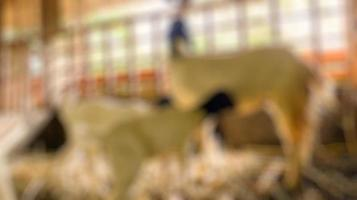 Blurred photo of goat animal in a cage, a photo that is very suitable for use in Islamic religious events
