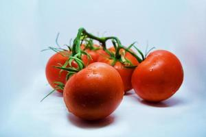 Tomatoes. Tomato branch. Tomatoes isolated on white. With clipping path. Full depth of field. photo
