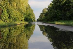 Beautiful summer landscape. Mirroring puddles. photo