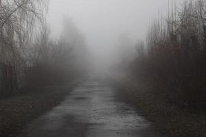 deserted trail in the fog. The road to the unknown. Mystical landscape. photo