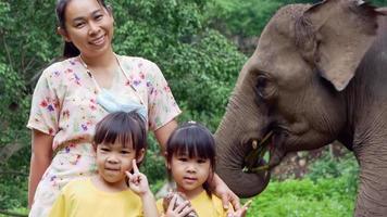 família feliz tirando fotos com elefantes comendo milho no acampamento de elefantes. as crianças vão de férias com suas famílias no zoológico. video