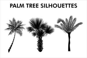 Realistic Palm Tree Silhouettes vector