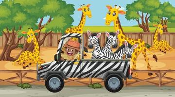Safari scene with many giraffes and zebras on the truck vector
