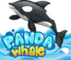 Orca or Killer Whale cartoon character with Panda Whale font banner isolated vector