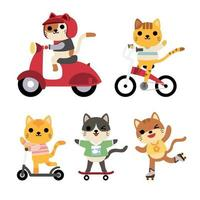 Big set of isolated animals. Vector collection of activity, riding, bike, cycle, roller skating, skateboarding, scootie, funny animals. Cute animals cat in cartoon style.