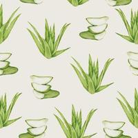 seamless Aloe vera in watercolor collection flat vector