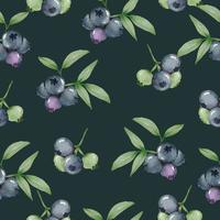 seamless with blueberry in watercolor collection flat vector