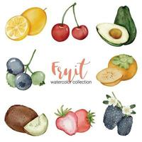Mix fruit in watercolor collection flat vector on white background