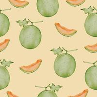 transparente con melón en acuarela colección vector plano