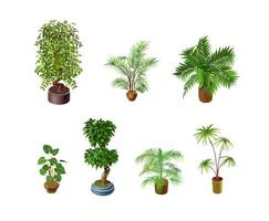 Indoor plants on a light background for interior design in isometric. Vector illustration
