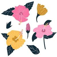 Set of Hand drawn Hibiscus flower with leaves. Exotic tropical flower concept. Flat illustration. vector