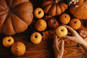 A bunch of pumpkins and apples. photo