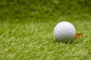 Golf ball is on green grass with marker photo