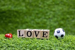 Soccer ball is on green grass photo