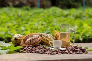 Granos de cacao crudos y mazorcas de cacao sobre una superficie de madera foto