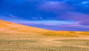 Rolling hills and Farm Land at palouse washington photo