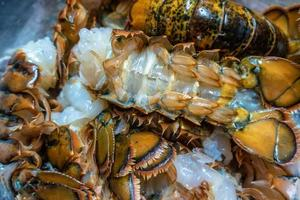 clean raw lobster tails prepared for grilling photo