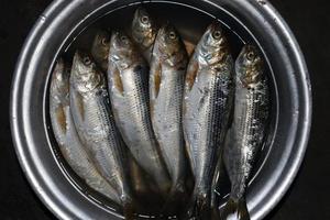 stock de pescado en la tienda para vender foto
