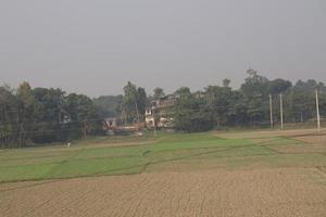 campo verde y cielo gris foto