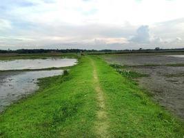 vista natural del pueblo con carretera foto