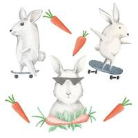 A watercolor set of rabbits skate on a skateboard and eat carrots. vector