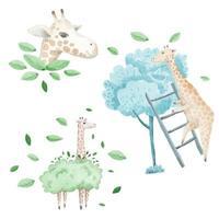 A watercolor set of animals consisting of 3 giraffe vector