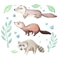 A watercolor set of animals consisting of 3 breeds of animal. vector