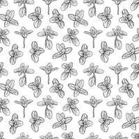 basil leaves seamless pattern vector