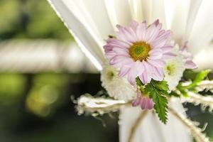 flowers on Curtain photo