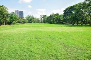 parque verde y árbol en el jardín bajo el fondo del atardecer. hacer ejercicio y relajarse. foto