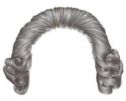 man wig gray hair curls. medieval style rococo. vector