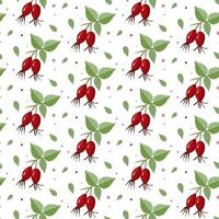 Seamless pattern with red rosehip berry vector