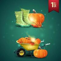 Set of autumns 3D icons, rubber boots, pumpkin, garden wheelbarrow with a harvest of pumpkins and autumn leaves vector