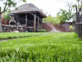 pasto verde en el patio. El riego del césped funciona cenador de madera. foto