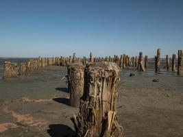wooden bollards in the sand against the estuary and blue sky. kuyalnitsky estuary photo