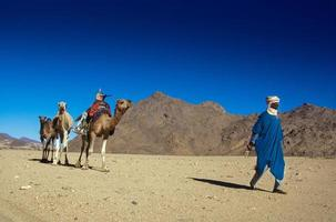 Tikobaouine, Italy 2010- Unknown touareg with camel walking in the Tassili n'Ajjer desert photo