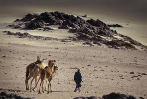 Tikobaouine, Italia 2010- touareg desconocido con camello caminando en el desierto de Tassili n'ajjer foto