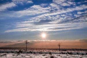 Winter landscape with the sun guarded by two small trees as models on a catwalk photo