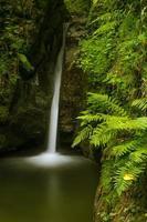Cascada en las montañas de los Cárpatos que fluye de un barranco tallado en piedra y cubierto de musgo foto