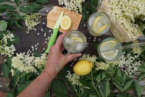 Female Hand Holds A Glass Of Elderberry Juice In The Summer Green Garden. photo