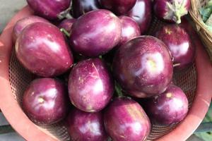 caldo de berenjena de color violeta sabroso y saludable foto