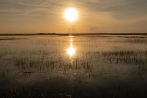 nature landscape scenes around hunting island state park in south carolina photo