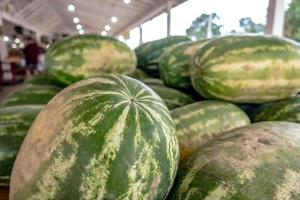 Pile of fresh ripe watermelons lying in wooden boxes in fruit photo