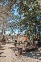 rancho de árboles de botella en la ruta 66 de california foto