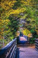 Vistas a lo largo de Virginia Creeper Trail durante el otoño foto
